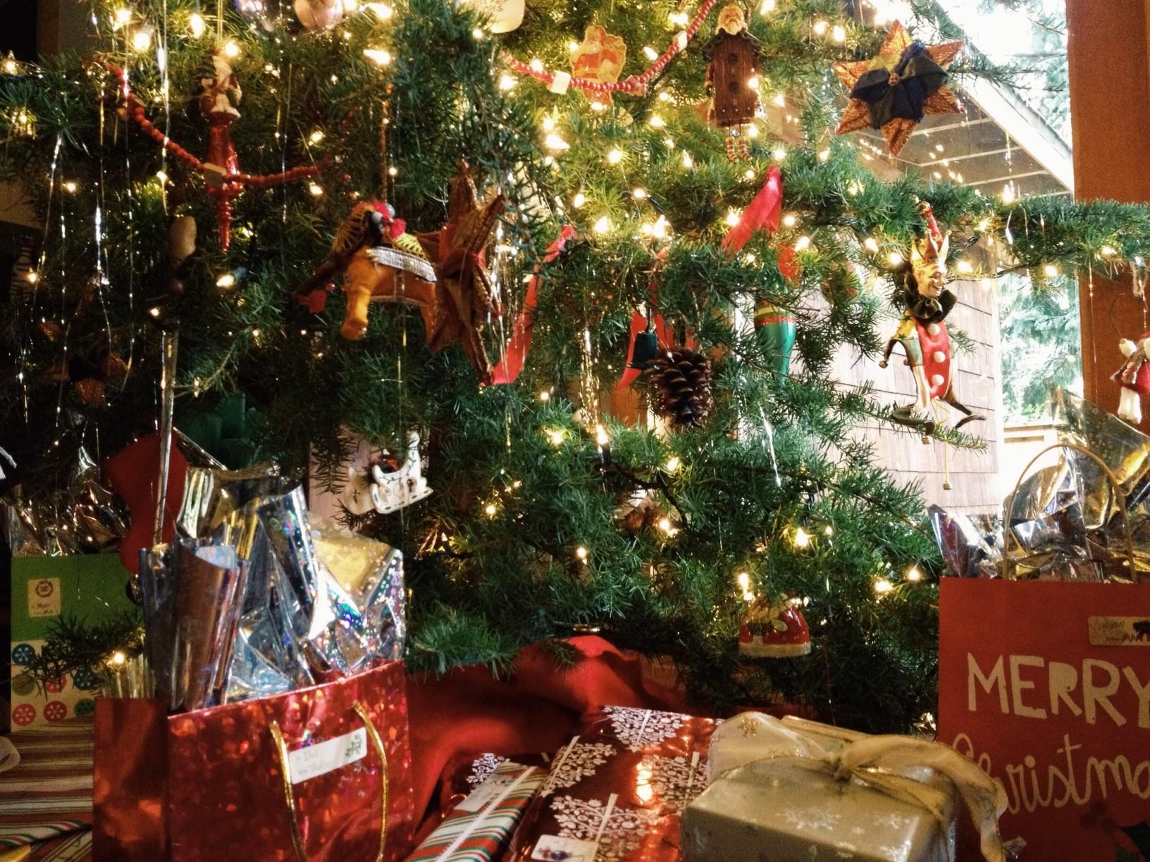Tag Archive For Christmas Tree Santa Photos